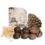 Декоративный мох и орехи. Кокосы и шишки для декора