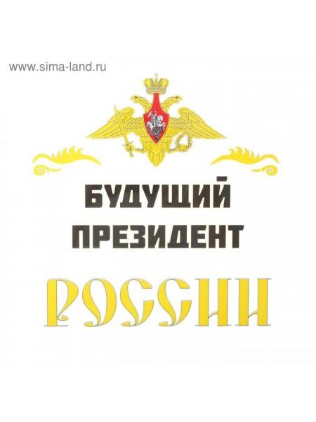Термонаклейка Будущий президент России 21 х 21 см на листе набор 10 шт