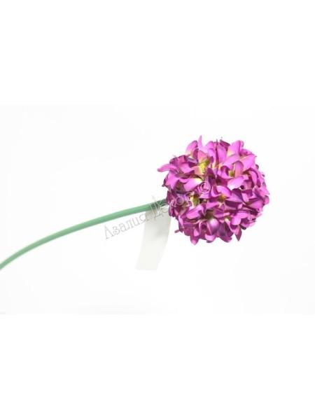 Аллиум 68 см цвет лиловый
