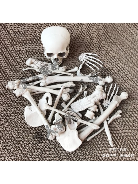 Кости скелета набор 28 деталей пластик цвет серый Хэллоуин HS-4-37