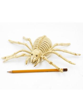 Скелет паука 25 х 12 см пластик Хэллоуин HS-4-28