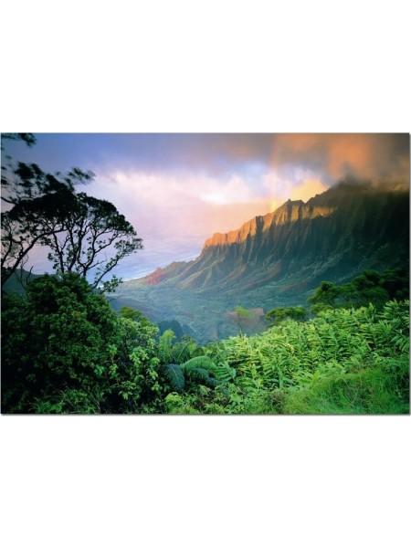 1500 элементов пазл Гаваи