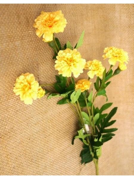 Бархатцы гвоздикоцветные 80 см цвет желтый