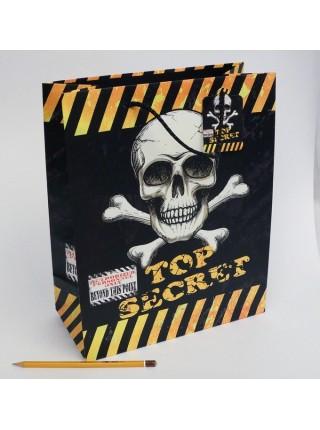 Пакет ламинированный Скелет 26х32х12,5 см цвет микс KR-1601M-1  HS-27-19