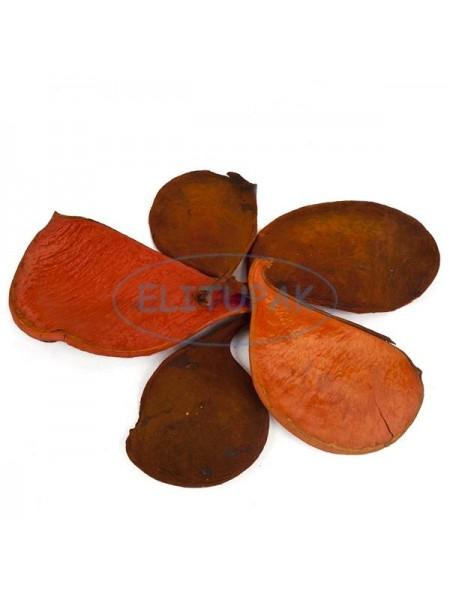 Элефант иэр оранжевый 5 шт