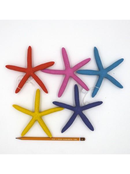 Звезда морская 12,5 см