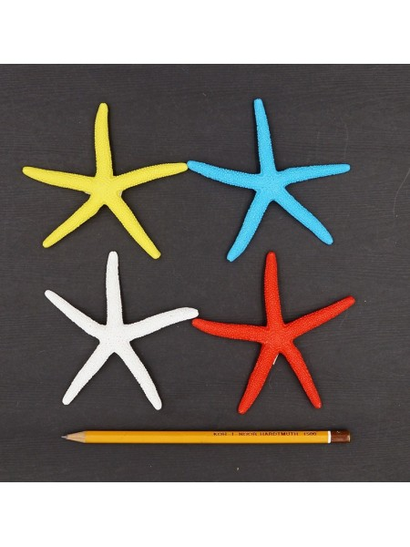 Звезда морская 10 см