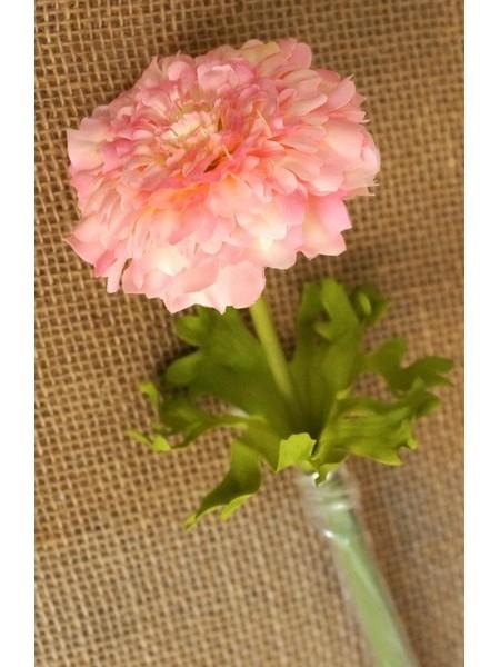Бархатцы розовые 55см
