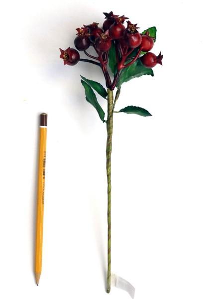 Боярышник ягода на ветке красный 27см