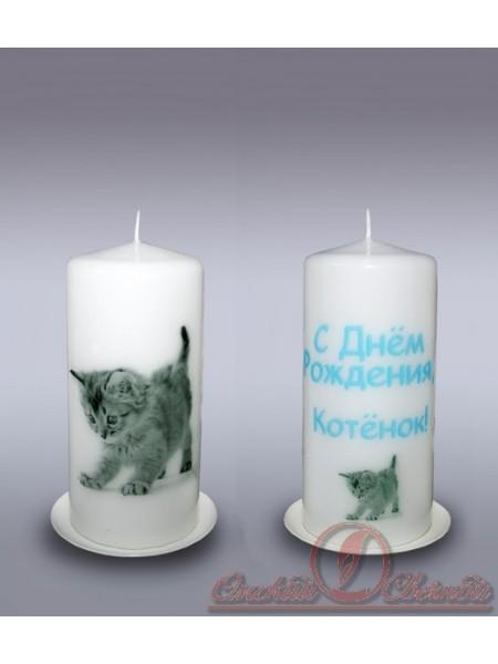 пенек свеча с днем рождения котик