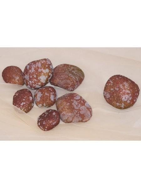 Камни искусственные малые  (8шт)