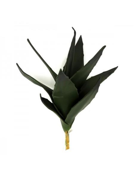 Алоэ темно-зеленый 35 см